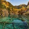 Jiuzhaigou Valley Wu Hua Hai