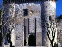 Chateau de Loches