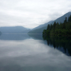 Along The Shores Of Lake Crescent