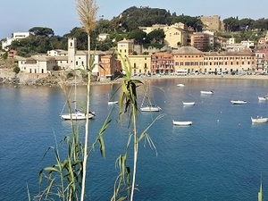 Dream Night... ... IN Sestri Levante Photos