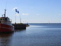 Ringkøbing Fjord