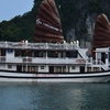 Halong Promotion Cruise