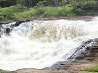 Murchison Falls & River Nile Trip