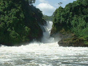Tour to Murchison Falls National Park