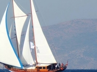 Ventus Sailing Cruises
