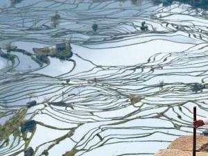 Viaje a Yunnan: