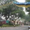 Ophir Road