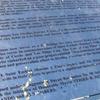 Proclamation Marker