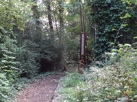 Belsize Wood