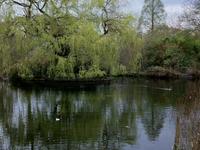 Sydenham Wells Park