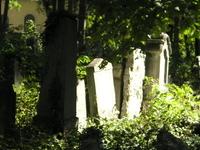 Jewish Cemetery in Währing