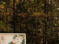 Hugh White State Park