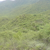 Sirumalai Hills