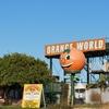 Orange World At Mourquong