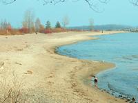 Ward's Island Beach and Island Beach