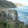 Muriwai Looking South Toward Anawhata