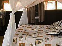 Mophy Budget Safari Tours