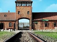 Shuttle 4 You Krakow Auschwitz Tours