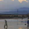 Salt Production Near Ninh Hòa