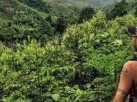 Chiang Mai Trekking - Good Morning Thailand Tours