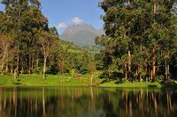Travel Gorge And Tours Uganda (East Africa Tourism )