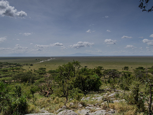 Tanzania Exclusive Tours - Bagamoyo Historical Tour Photos