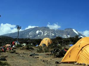 Tanzania Kilimanjaro Mountain Climbing Machame Route Fotos