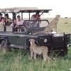 Kilimanjaro Safari Holidays Co Ltd