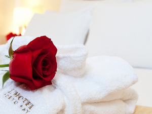 Honeymoon Package With Honeymoon Decoration Photos