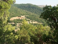 Ajlun Nature Reserve