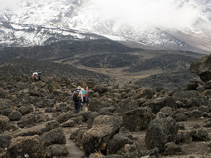 Amazing Adventure Climbing Kilimanjaro Photos