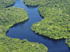 Amazon Rain Forest 4 Days Photos