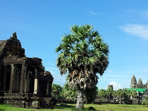 Angkor Wat Tours 3 Days 2 Nights Fotos
