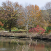 Antioch Park Merriam