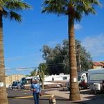 Apache Palms Rv Park
