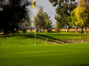 Apache Sun Golf Club