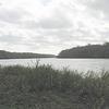 Apalachicola River