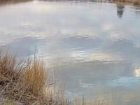 Appoquinimink River