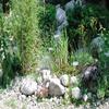 Arboretum - Botanical Garden