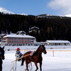 Horse Racing On The Frozen Obersee In Winter
