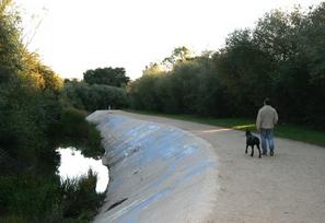 Atascadero Creek