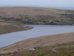 Dartmoor reservoirs