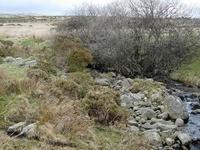 Afon Dulyn