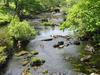 Lledr River