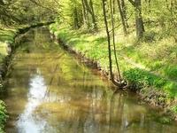 Aller Canal
