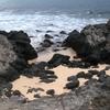 Black Volcanic Rocks