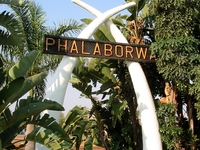 Phalaborwa