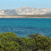 Asinara Island, View From Stintino Beach