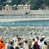 A Study Group By The Ganges At Muni Ki Reti