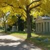 Autumn In Fairmount Cemetery